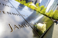USA, New York City, Ground Zero, white rose on memorial plaque, close-up - PU01405