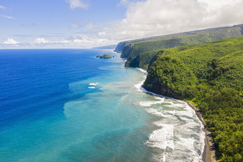 USA, Hawaii, Big Island, Pacific Ocean, Pololu Valley Lookout, Kohala Forest Reserve, Aerial View - FOF10609