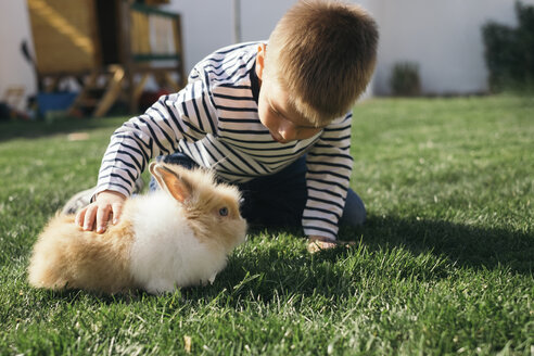 Little boy petting a bunny in garden - MOMF00684