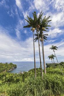 USA, Hawaii, Big Island, Onomea Bay - FOF10617