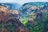 USA, Hawaii, Kauai, Overlook over the Waimea canyon - RUNF01836
