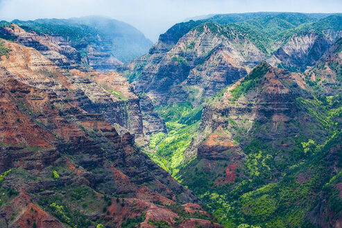 USA, Hawaii, Kauai, Overlook over the Waimea canyon - RUNF01836
