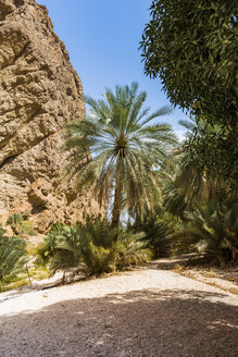 Sultanate Of Oman, Wadi Shab - WVF01133