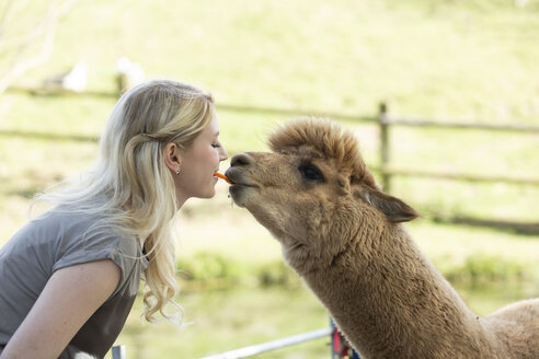 Woman feeding alpaca from mouth to mouth - FLLF00098