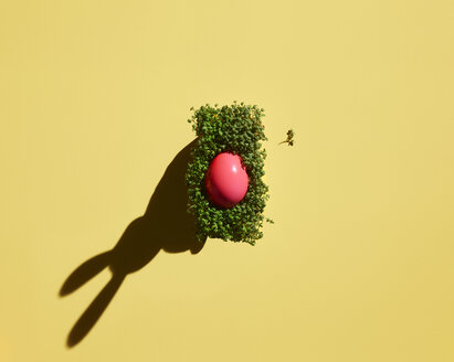 Pink Easter egg on cress with shadow of bunny ears - KSWF02024