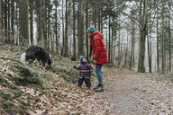 Mother with little daughter and Border Collie in autumnal forest - DWF00401