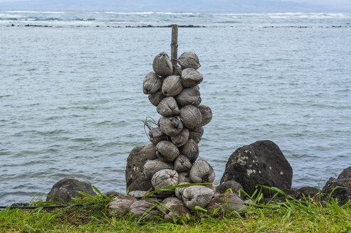 Hawaii, Island of Molokai, coconut marker - RUNF01859