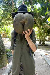 Seychelles, man hiding his face behind huge seed of Coco de Mer - NDF00887