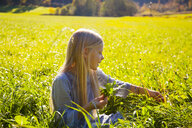 Girl sitting in field with blowball - HSIF00544