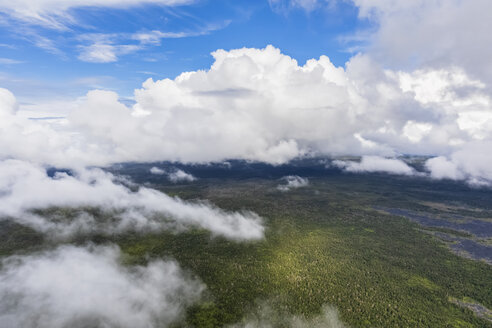 USA, Hawaii, Big Island, aerial view of Puna Forest Reserve - FOF10704