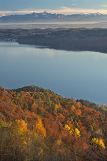 Germany, Baden-Wuerrttemberg, Lake Constance, Sipplingen, autumn forest, Alps and lake - SH02174