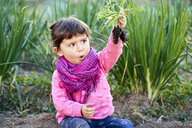 Portrait of toddler girl in the garden looking at small tomato plant in her hand - GEMF02926