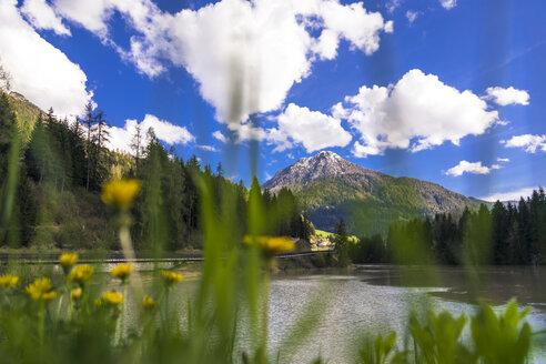 Italy, Trentino Alto-Adige, Soraga, view of the town through Soraga lake - FLMF00178