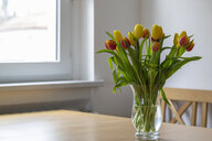 Bouquet of red and yellow tulips on dining table - MELF00205