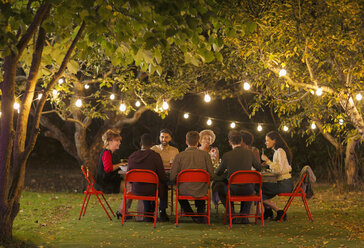 Friends enjoying dinner garden party under trees with fairy lights - CAIF23212