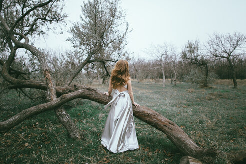 Glamorous location woman standing near fallen tree - BLEF00405
