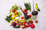 Variety of vegetables on table - BLEF00807