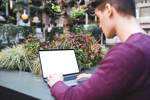Young man using laptop - FBAF00458