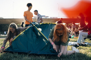 Friends making tent on lawn in music festival during summer - MASF12202