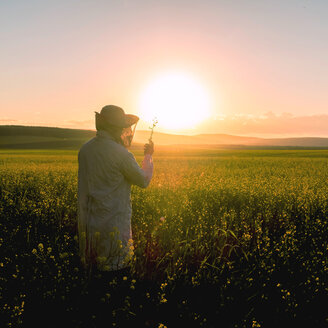 Woman examining wildflowers in field at sunset - BLEF01621