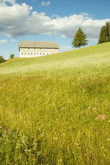 Bauernhof im Mühlviertel, Oberösterreich, Österreich - AIF00677