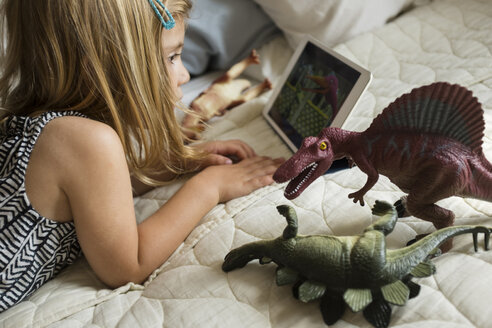 Caucasian girl laying on bed with toy dinosaurs using digital tablet - BLEF01808