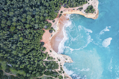 Portugal, Algarve, Lagoa, Praia da Corredoura, aerial view of forest, rocky coastline and sea - MMAF00926