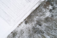 Wood boundary to snow-covered agricultural fields seen from above - RUEF02179