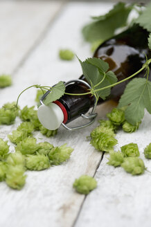Beer bottle, hop cones and tendril on white wood - ASF06391