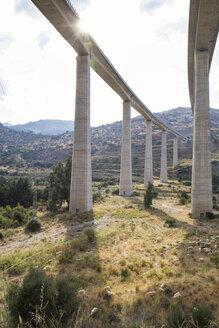 Italy, Sicily, Tusa, motorway bridge and flock of sheep - MAMF00643