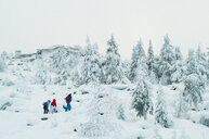 Caucasian friends hiking in snowy forest - BLEF02669
