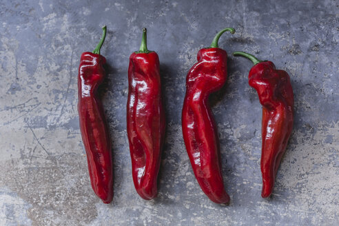 Row of four red pointed peppers - STBF00330
