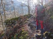 Spain, Asturia, Cantabrian Mountains, senior man on a hiking trip through the woods - LAF02303