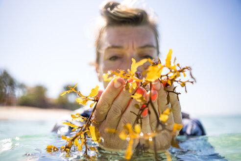 Woman with handful of seaweed in sea, Pagudpud, Ilocos Norte, Philippines - CUF51029
