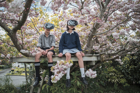 Mixed Race brother and sister sitting in tree wearing virtual reality goggles - BLEF03103