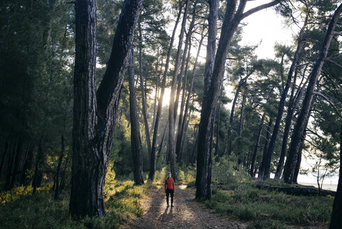 Caucasian woman standing on path in forest - BLEF03112