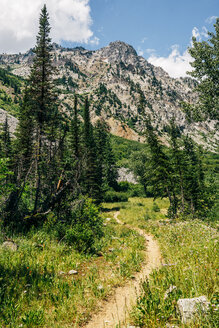 Dirt path in mountains - BLEF03196