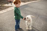 Boy giving pet puppy training treat - CUF51165