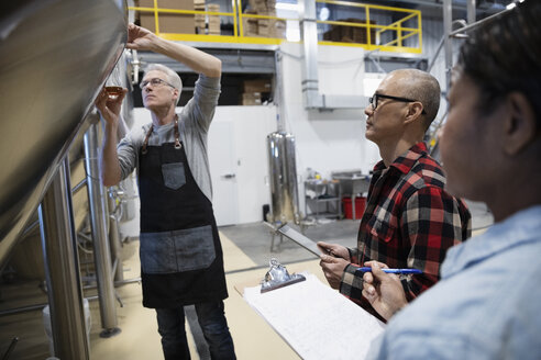 Brewers examining and tasting beer from fermentation tank in brewhouse distillery - HEROF36309