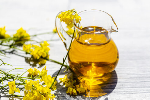 Rapeseed oil in jar with rape blossom on wood - SARF04269