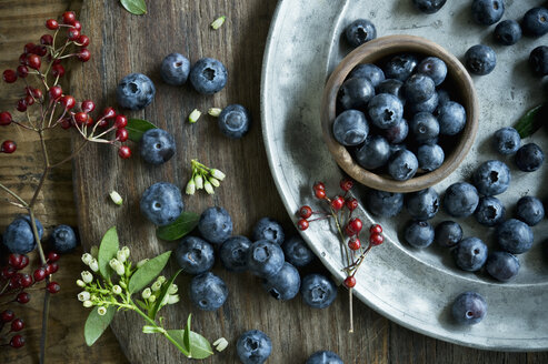 Bowl of blueberries, wooden spoon, rosehip, blueberry blossoms on wood - ASF06414