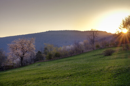 Sonnenaufgang bei Ehrenberg, Rhön, Hessen, Deutschland - LBF02569