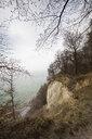 Chalk cliff, Jasmund National Park, Ruegen, Germany - WIF03911