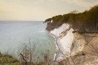 Chalk cliff, Jasmund National Park, Ruegen, Germany - WIF03917