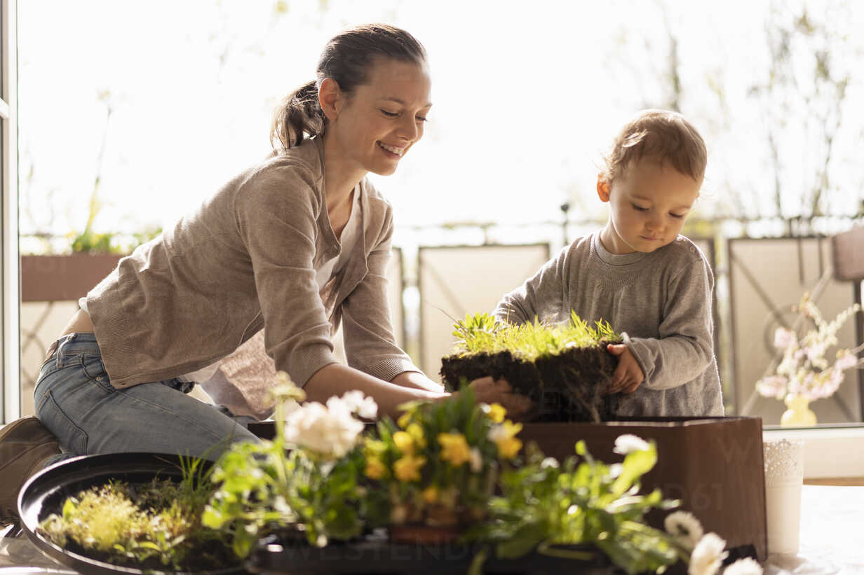 Mother and daughter planting flowers together on balcony - DIGF07037 - Daniel Ingold/Westend61