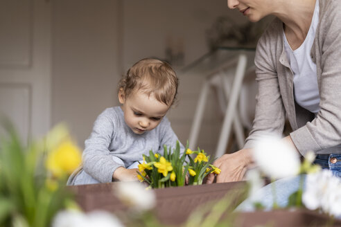 Mother and daughter planting flowers together at home - DIGF07043