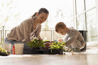 Mother and daughter planting flowers together on balcony - DIGF07049
