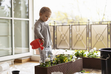 Cutle little girl watering flowers at home - DIGF07052