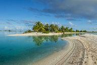 French Polynesia, Tuamotus, Tikehau, palm beach - RUNF02075