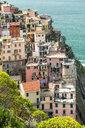 Manorola, Cinque Terre, Ligurian Riviera,  La Spezia Province, Italy - STSF01978